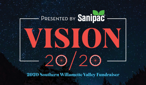 dev_spe_swvauction_vision2020_graphic_v2
