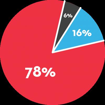 Financial Pie Graph